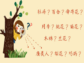 形色识花:一款教你识遍身边各种花花草草树树木木的神奇小程序