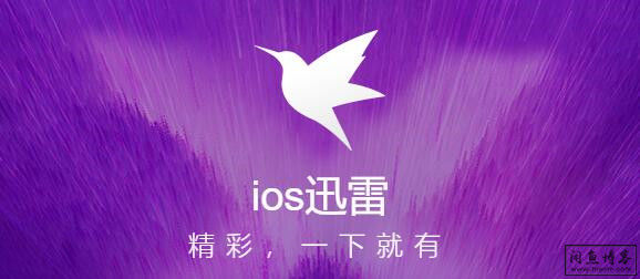 IOS迅雷:最新版上架商店,需要的速度下载!